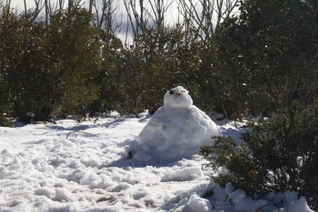 Mr. Snow Man says Hi
