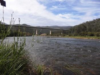 Snowy River @ McKillops Bridge